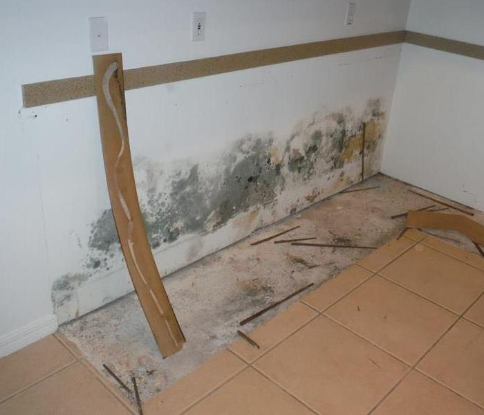 bare kitchen wall with mold