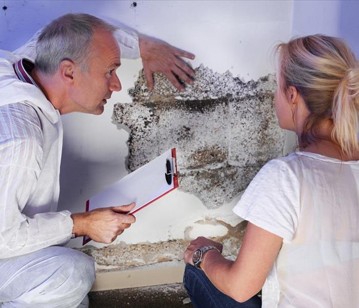 a pest control contractor or exterminator with a blonde female customer at a mold destroyed wall and explain her the problem