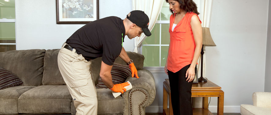 Bonita Springs, FL carpet upholstery cleaning