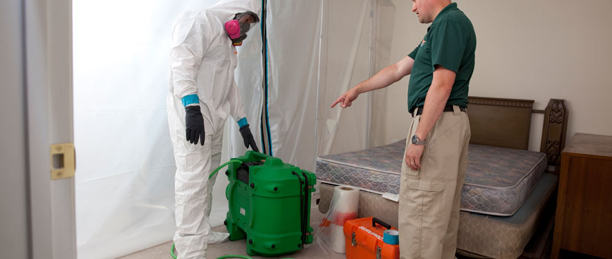 Bonita Springs, FL mold removal process